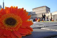 http://www.january13.org/bo/foto/38_2.jpg
